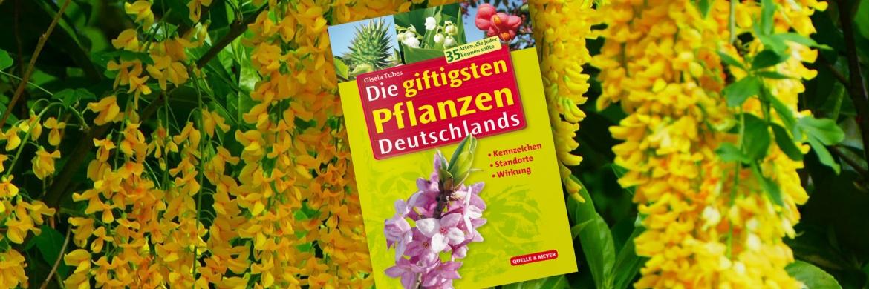 slider-giftpflanzen.jpg