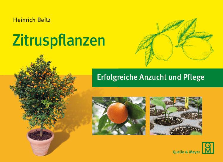 Belz-Zitruspflanzen.jpg