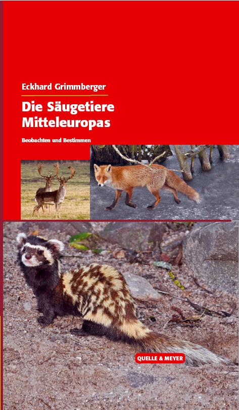 Grimmberger-Säugetiere.jpg