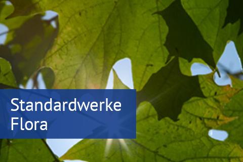 Standardwerke Flora