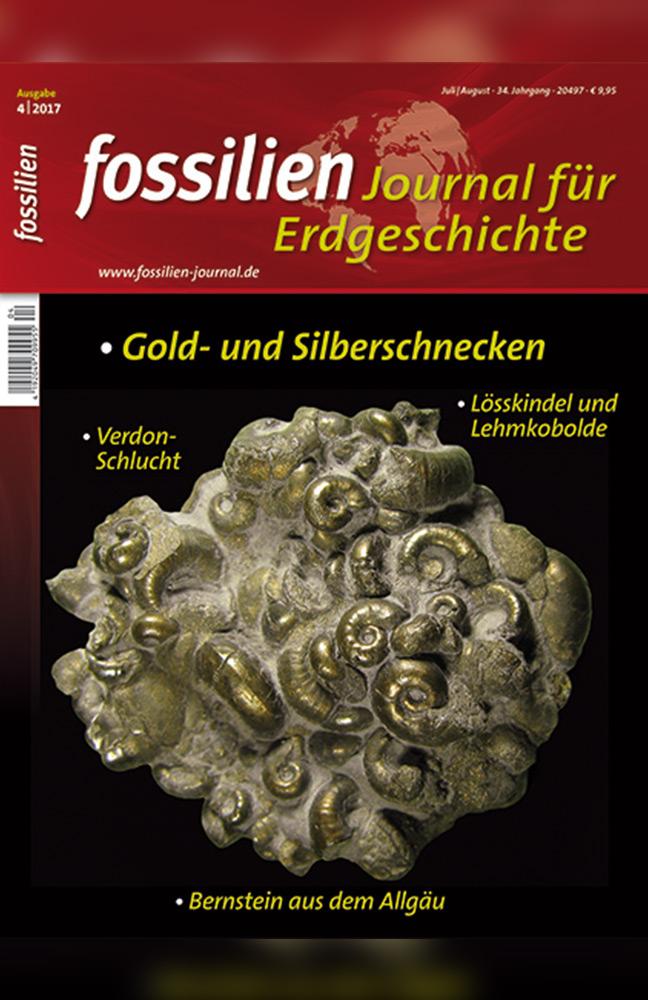fossilien-1.jpg