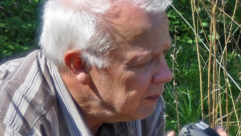 Grimmberger, Dr. med. Eckhard