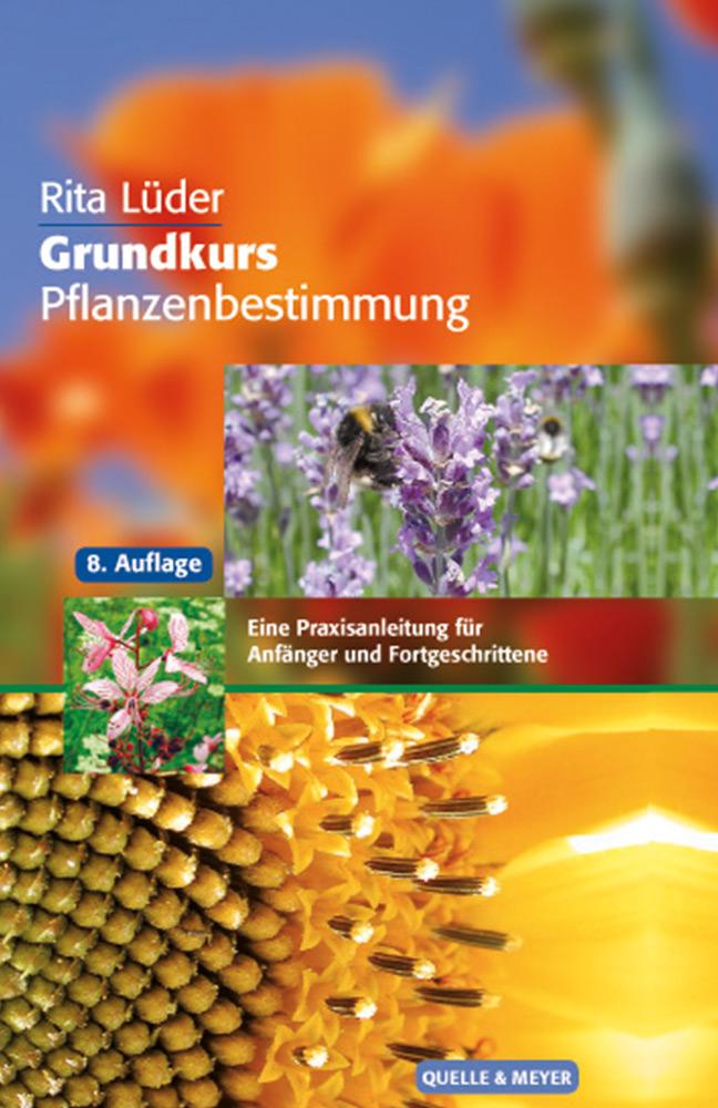 pflanzenbestimmung-grundkurs.jpg