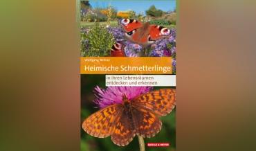 """Buchankündigung """"Heimische Schmetterlinge"""""""