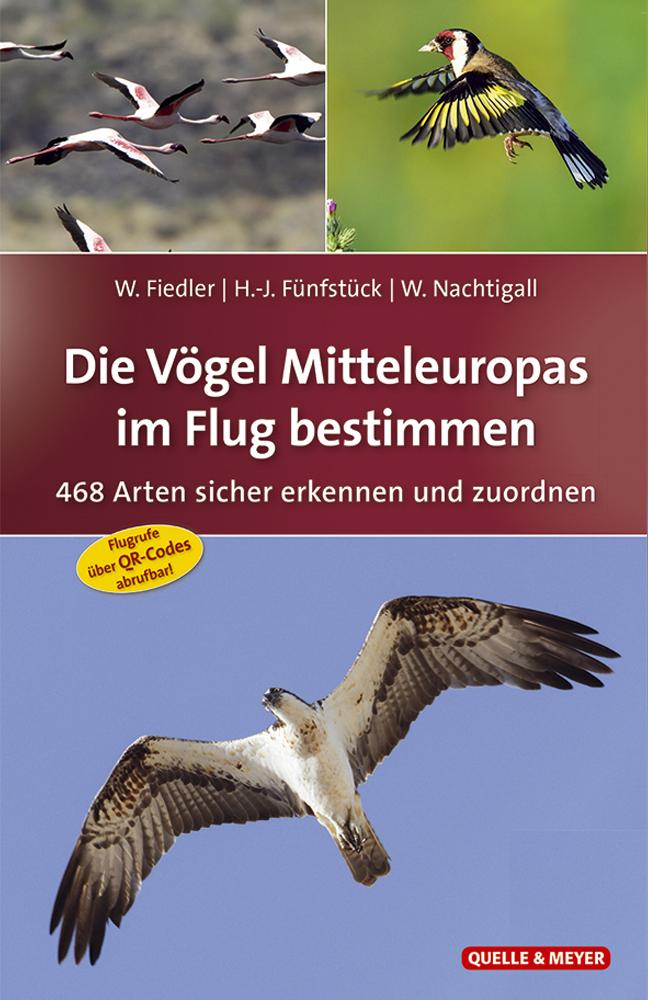 Fiedler_Vögel-i.-Flug-bestimmen_1.A.5x7.jpg