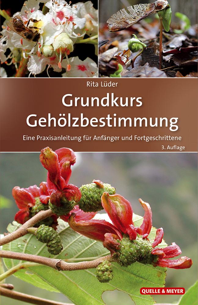 Lueder_GK-Gehoelze_3.A._5x7.jpg
