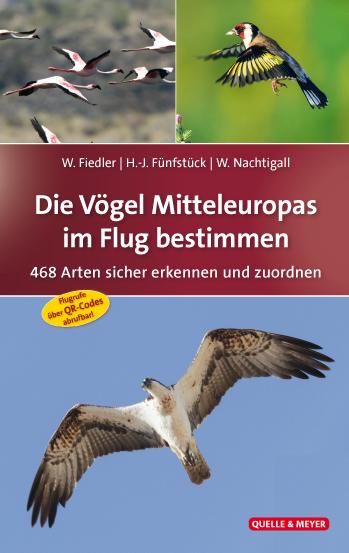 Vögel-im-Flug.jpg