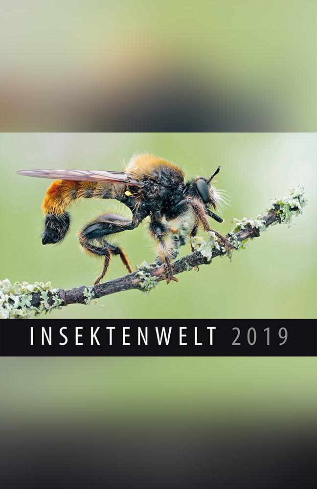 Insektenkalender.jpg