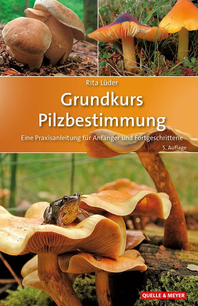 Lüder-GK-Pilze.jpg