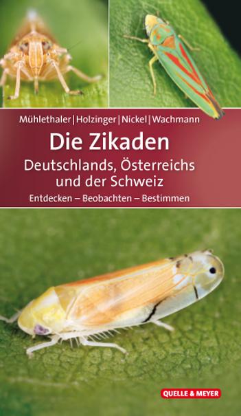 Mühlethaler-Zikaden-Deutschlands.jpg