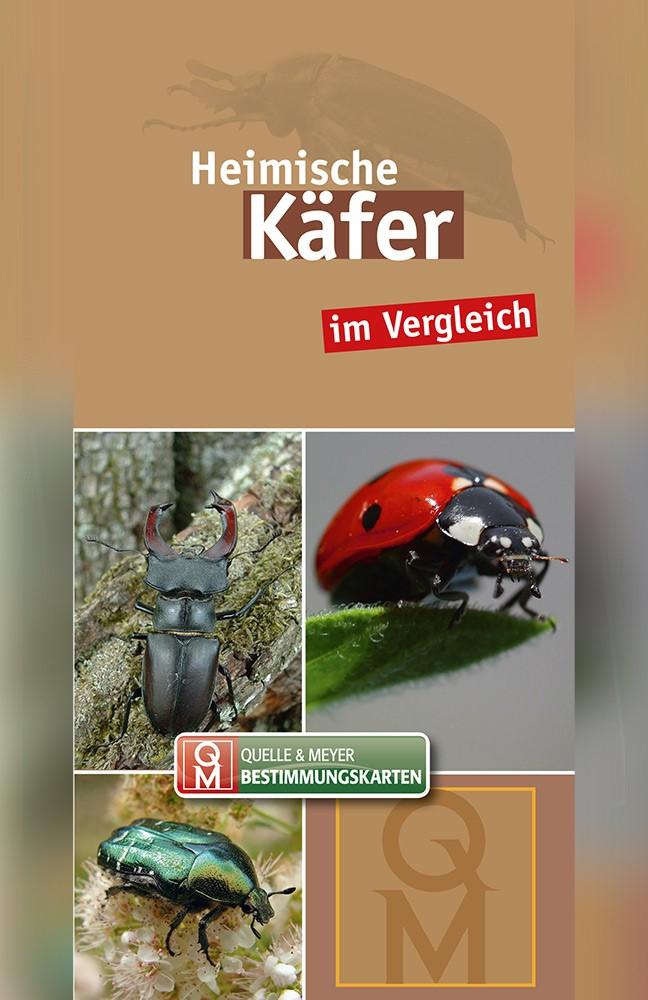 Käfer-Karte.jpg