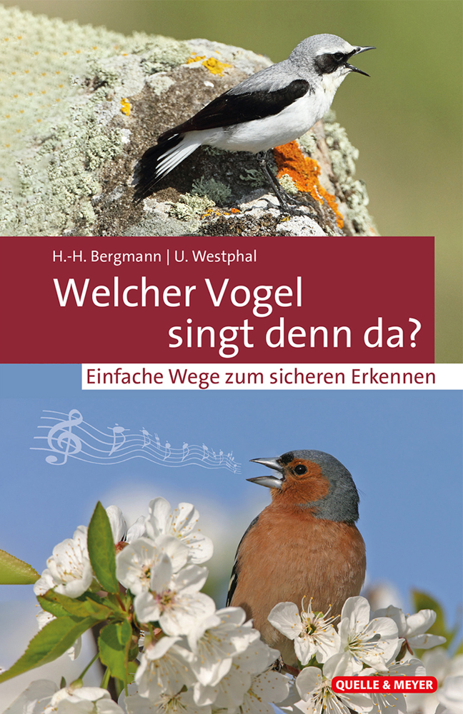 Welcher-Vogel-singt-denn-da.jpg