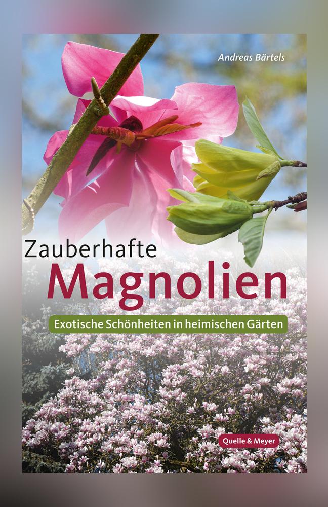 Bärtels-Magnolien.jpg