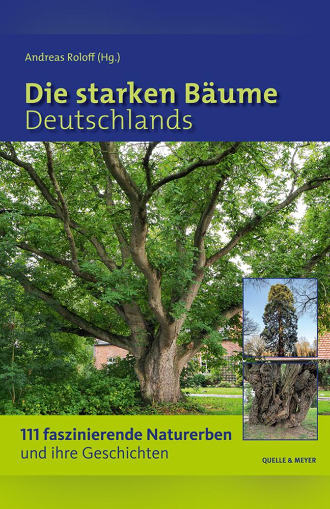 Roloff-Starke-Bäume.jpg