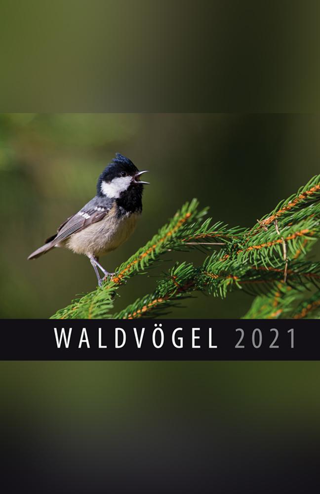 Wandkalender-Waldvögel.jpg