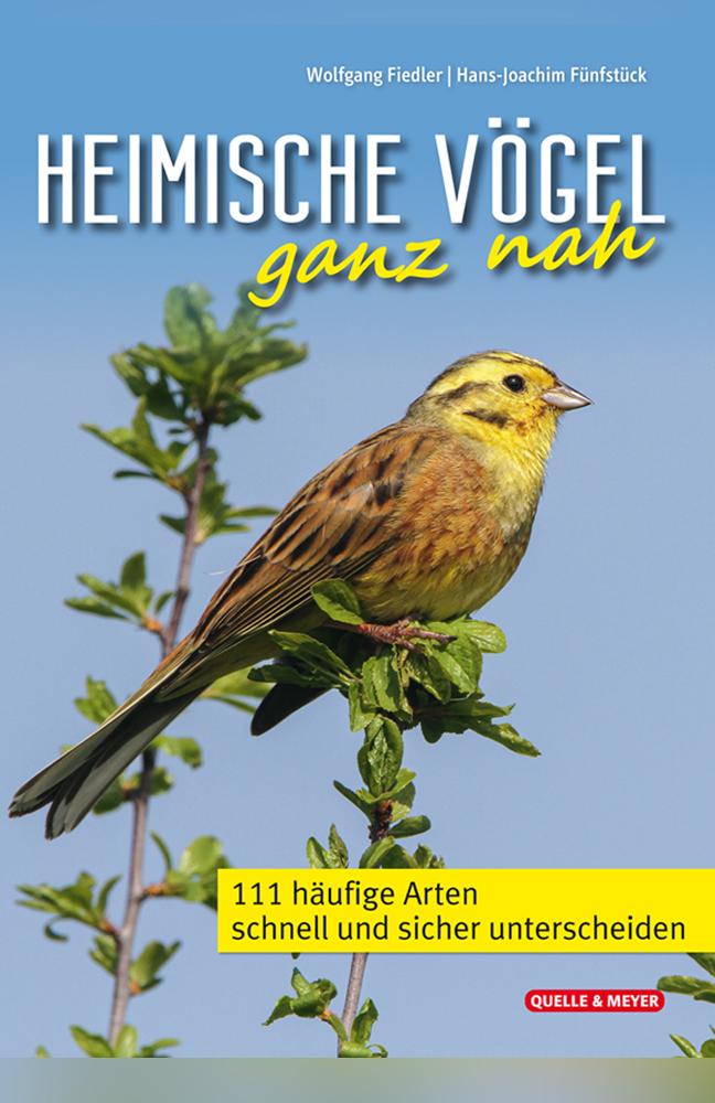 Fiedler-Heimische-Vögel.jpg
