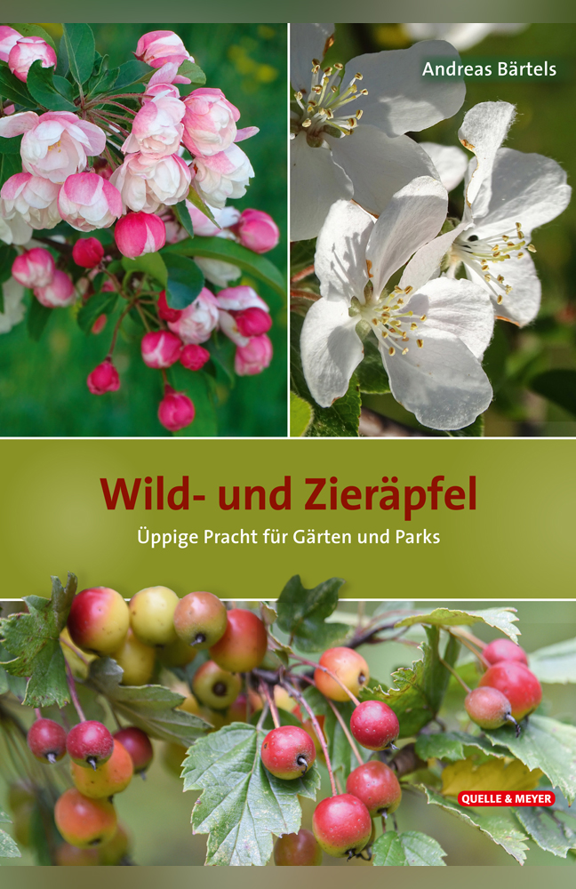 Bärtels-Wildäpfel.jpg