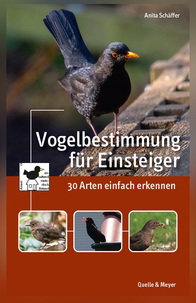 Schäffer-Vogelbestimmung-für-Einsteiger.jpg