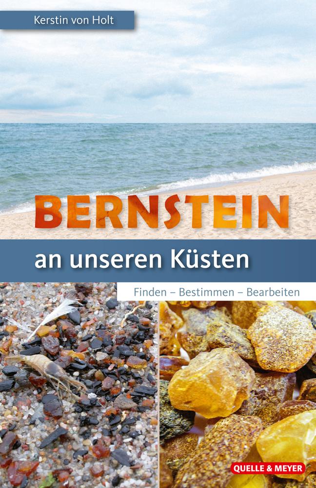 Holt-Bernstein.jpg