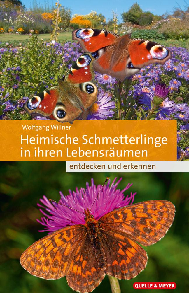 Willner-Heimische-Schmetterlinge.jpg
