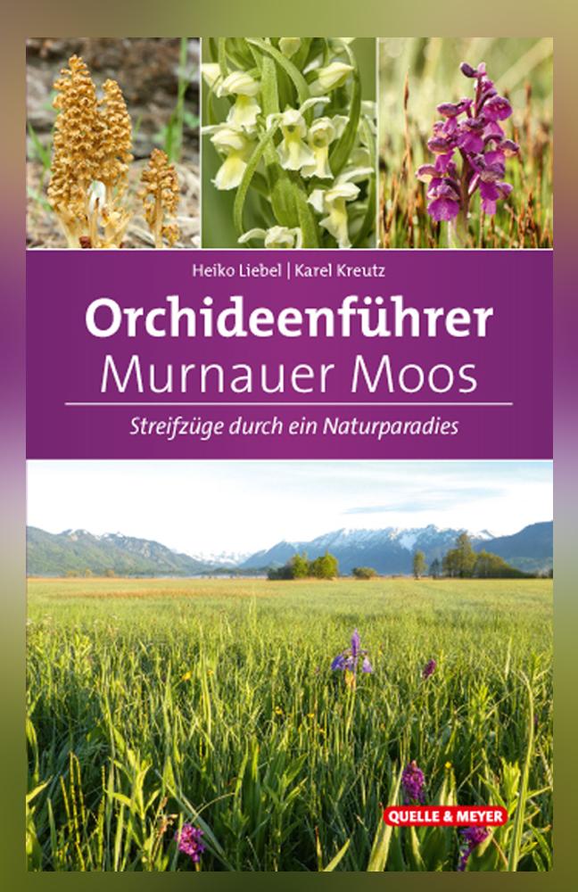 Liebel-Orchideen-MM.jpg
