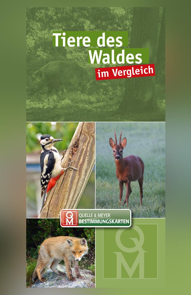 QM-Bestimmungskarte-Tiere-des-Waldes.jpg